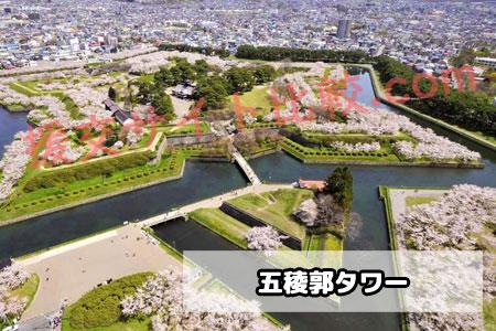 北海道の援交スポット「五稜郭タワー」の画像