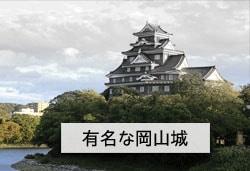 岡山城の画像