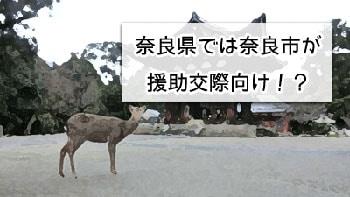 奈良県の奈良市で援交の画像