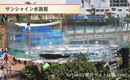 豊島区の援交にオススメの待ち合わせスポット「サンシャイン水族館」の画像
